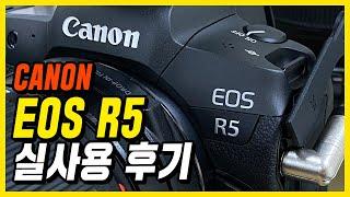 [8K] 캐논 EOS R 에서 R5 로 바꾸고 사용해본…