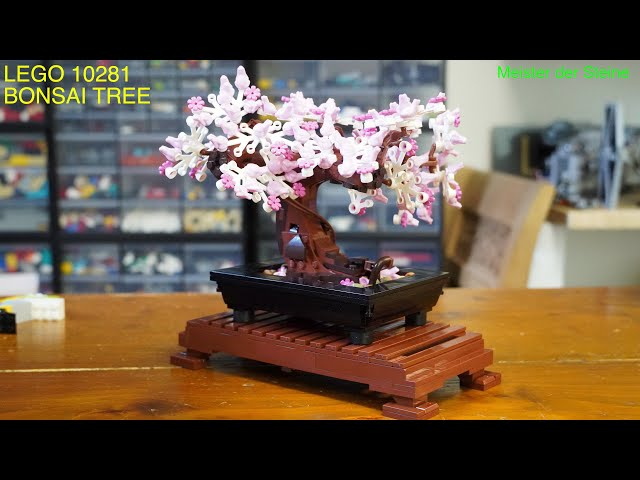 Lego 10281, Bonsai Tree, Meister der Steine
