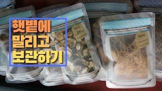 채소 말리기/겨울 저장 음식/각종 말린 채소 저장