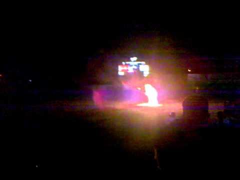 Savannah Sand Gnats Man on Fire