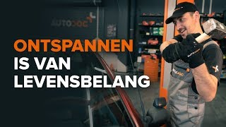 Onderhoud tips - VW Polo Sedan (602, 604, 612, 614) 1.4 Spiraalveer instructies voor vervanging