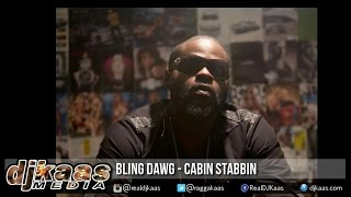Bling Dawg - Cabin Stabbin ▶Good Love Riddim ▶LockeCity Music ▶Reggae ▶Dancehall 2015