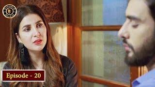 Koi Chand Rakh Episode 20 - Top Pakistani Drama