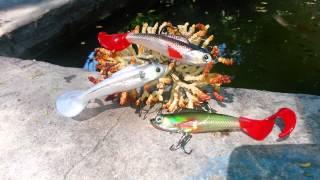 Señuelos de Pesca Silicon Accion Cola Espiral Escolleras y lobinas