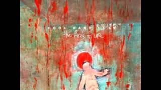 Watch Cool Hand Luke The Zombie Song video