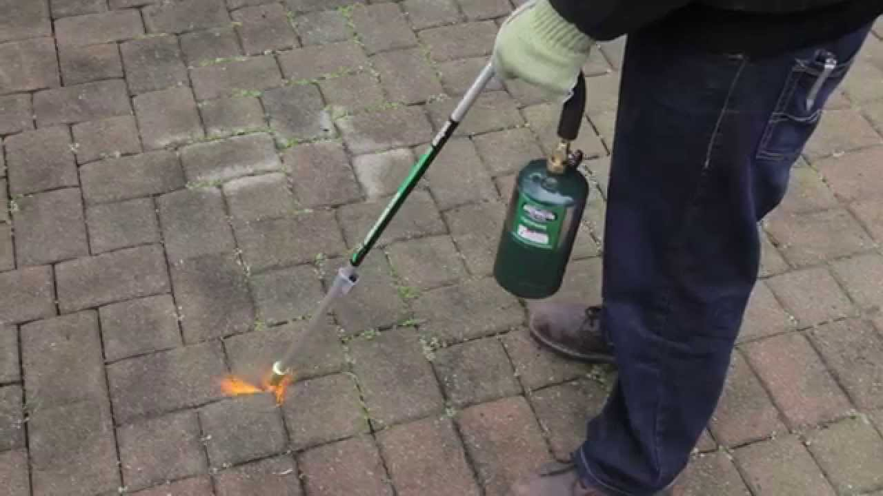 Burn Weeds Away With The BernzOmatic Lawn And Garden Torch   YouTube