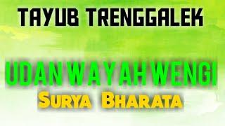 Gambar cover TAYUB UDAN WAYAH WENGI VOC. SURYA BHARATA  BY HR PRO