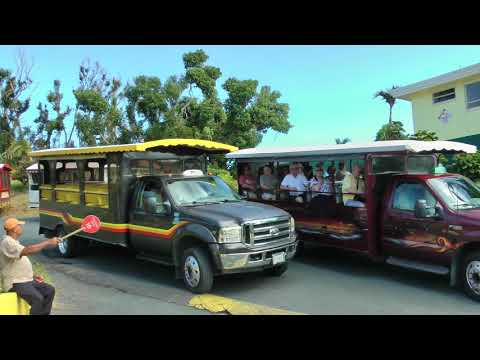 safari style taxis at the world famous Mountain Top on St. Thomas, U.S. Virgin Islands