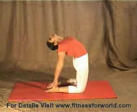 ushtrasana yoga poses asana  youtube