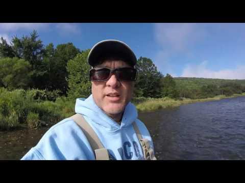 West Branch Delaware River, Flyfishing, TRIP #2, August 2016