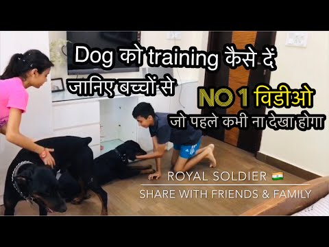 Doberman Dog training by Kids and Royal Soldier. Amazing video to know how to trained dogs