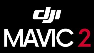 DJI MAVIC 2 SHOULD BE LIKE THIS!!