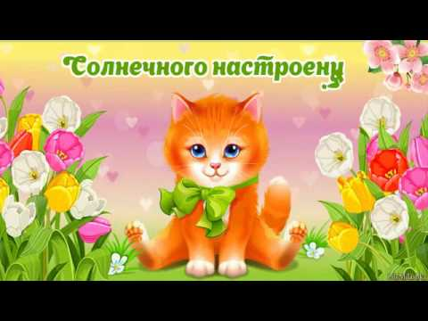 Новый канал Мурки  с канала Mister Max \u0026 Miss Kate