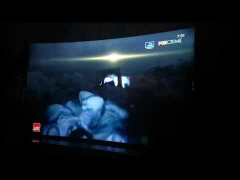 FOX Crime HD - Vice (Ch. 475)