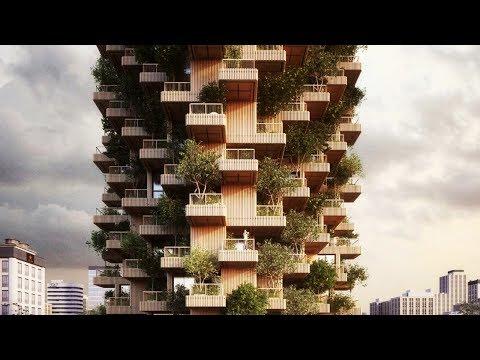 Meet Tree Tower