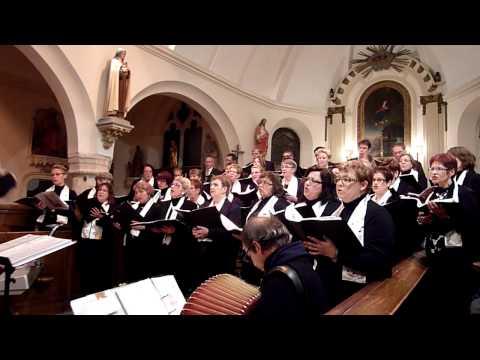 La Chorale Choeurs And Caux Interprète Mille Colombes