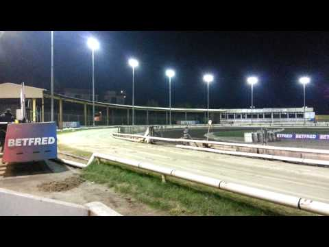 Greyhound Racing At Owlerton Stadium, Sheffield