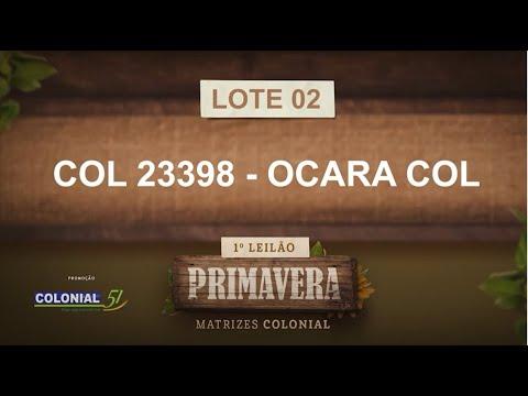 LOTE 02   COL 23398