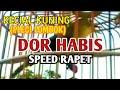 Burung Kecial Kuning Pleci Lombok Pleci Gacor Speed Rapet  Mp3 - Mp4 Download