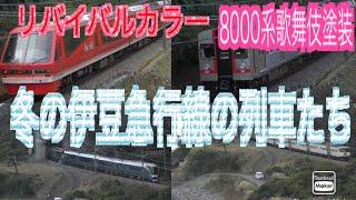 リバイバルカラー8000系歌舞伎塗装と冬の伊豆急行線の列車たち