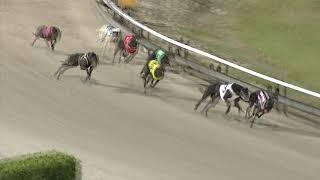 Albion-Park-Monday-21102019-Race-5