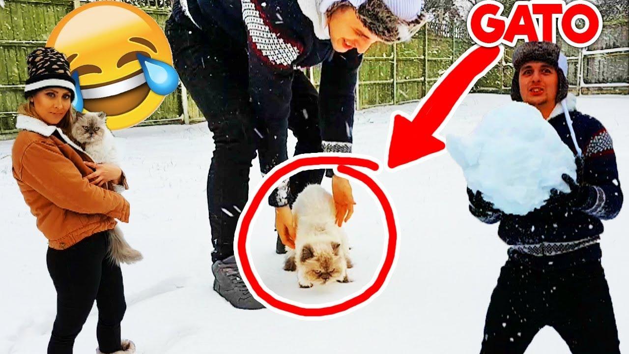 mi-gato-en-la-nieve-por-primera-vez-locuras-en-la-nieve