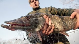 браконьеры на рыбалке(, 2016-02-25T12:54:46.000Z)