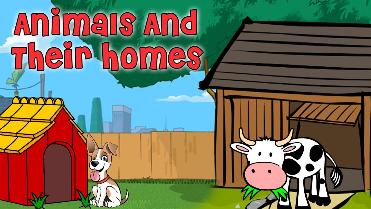 Learn Animals And Their Homes | Pre School Learning and Kids Education
