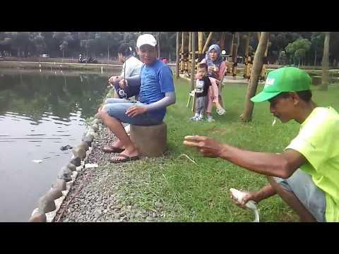 Kolam Pemancingan Kabeda Depok - Jakarta