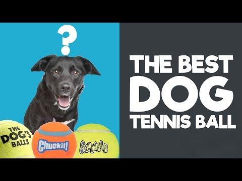 The Best Dog Tennis Balls