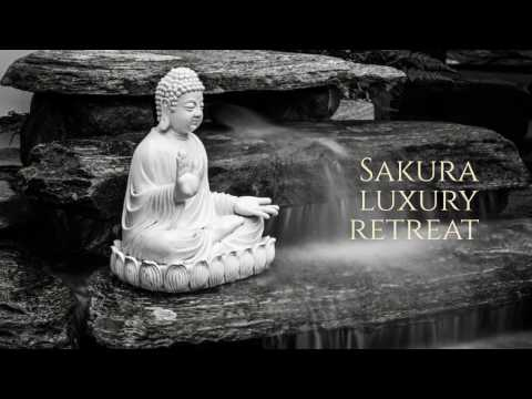 Sakura Luxury Wellness Retreat and Homestay