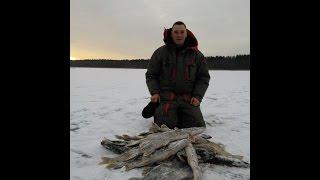 Щука на зимние жерлицы, первый лед 2014 ч.1