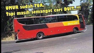 [Bismania] Kompilasi BUS Lawas & Tua Masih Kejar Setoran!! BUS Sinar Jaya Goodwill Damri Sahabat