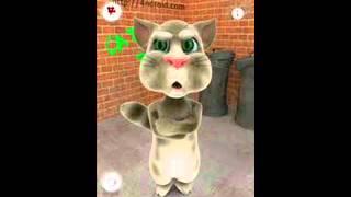 el gato tom canta el coco no super tony