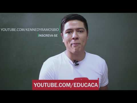 YOUTUBE EDU &  KENNEDY RAMOS - BIOLOGIA