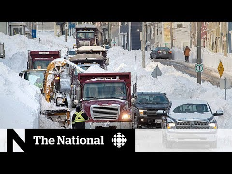 CBC News: The National: Service delays pile up following N.L. blizzard