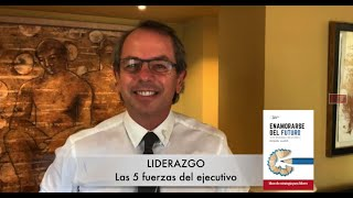 Liderazgo - Las 5 fuerzas del ejecutivo   Miquel Lladó