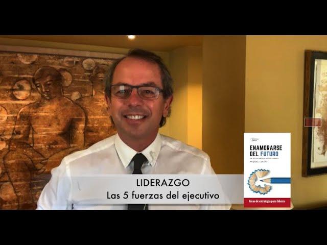 Liderazgo - Las 5 fuerzas del ejecutivo