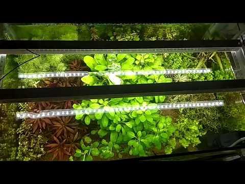 29 paneles de luz LED Grow para bricolaje que puede hacer en su casa 5