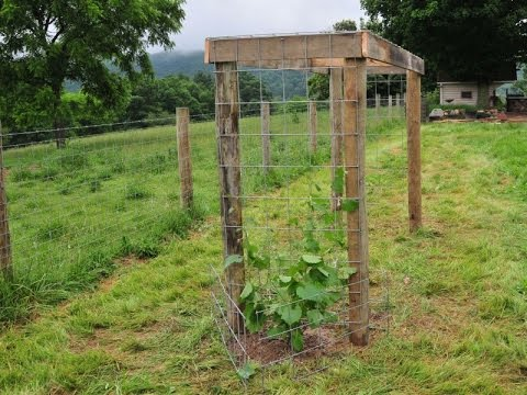 building a grape arbor   youtube