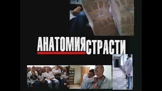 5 група   Анатомия страсти (трейлер   пародия)