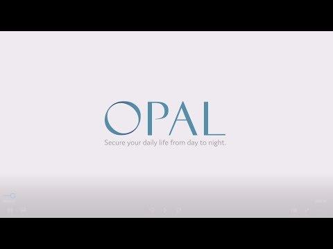 GeoVision GV-OPAL S1 Introduction