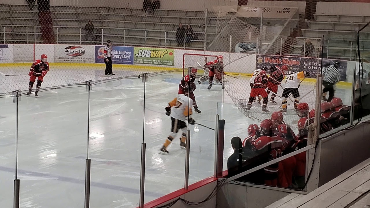 Sarnia jr sting aaa midget, real sex mainstream films