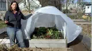 Grow food in winter with grow tunnel