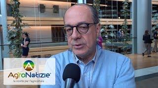 Paolo De Castro: 'La Pac resti comune'