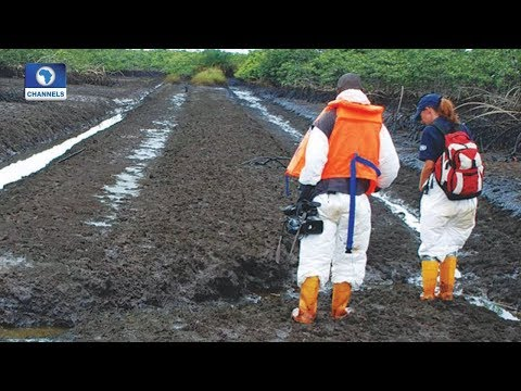 Ogoni Clean-Up Situation Report Pt 1 | Question Time |