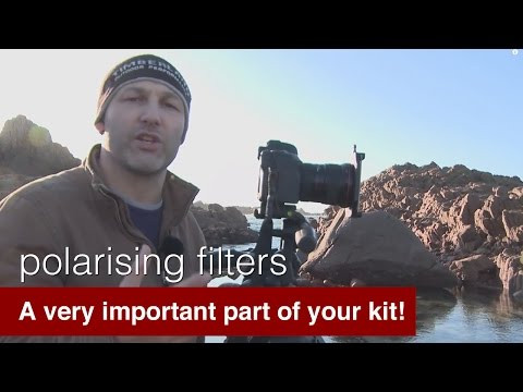 Why are Polarising filters (Polarizing filters) so important?