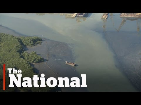 Rio's Polluted Waterways