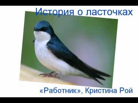 История о ласточках 1/2  Кристина Рой