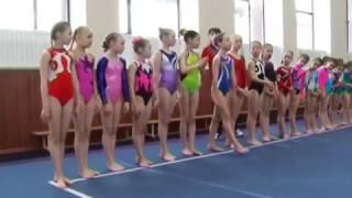 Спортивная гимнастика – сила, красота и грация